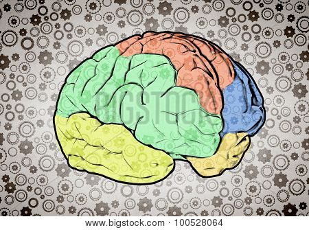Sketch of human brain and business ideas and strategy on white background