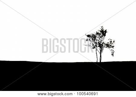 Black And White Silhouette Of Lonely Tree