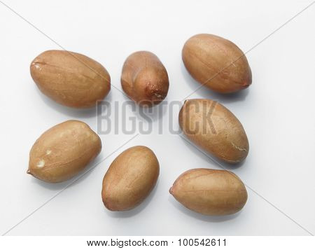 peanuts on the white background