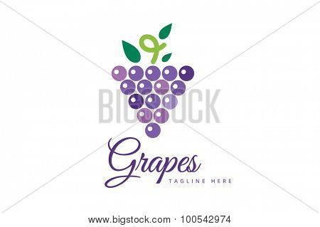 Grapes vector isolated. Grapes icon. Grapes logo. Grapes wine or grapes vine. Grapes with green leaf isolated. Nature grapes logotype. Wine or vine logo icon. Fruits and vegetables. Grapes icons