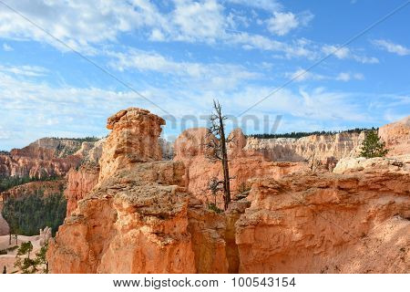 Horizontal shot of the Amphitheater seen from the Queens Garden Trail in Bryce Canyon National Park, Utah. The Amphitheater is famous for it numerous formations called Hoodoos.