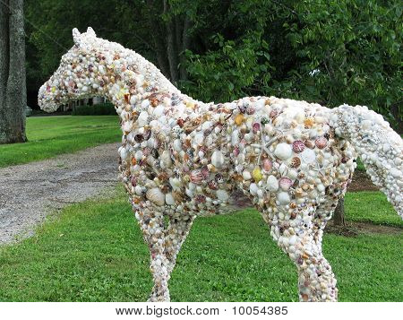 A Horse of a Different Shell