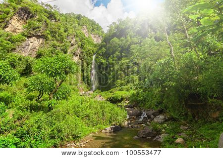 Waterfall in deep forest near in the summer