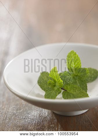 Fresh mint close up on the saucer