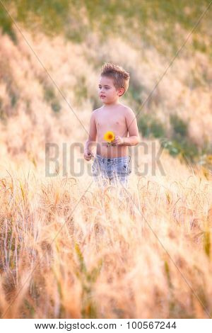 5 Year Old Boy Outdoor
