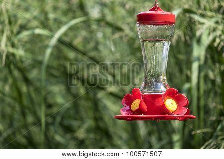Colorful Hummingbird Feeder in a Backyard Garden