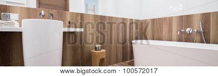 Stylsih Bathtub And Washbasin