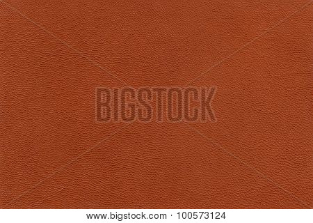 Texture sheep skin of reddish color