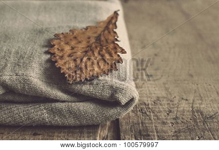 Knitted Woolen Cardigan And Oak Leaf