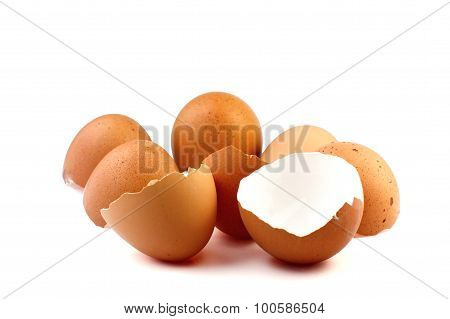 Eggshell On White Background