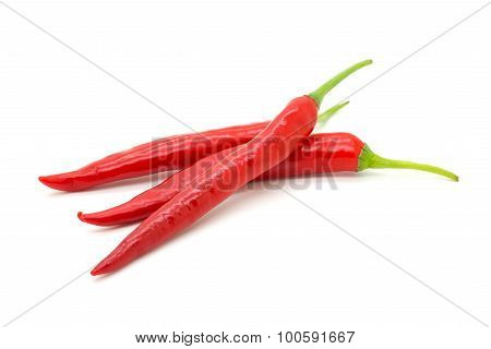 Hot Red Chili Or Chilli Pepper Isolated.