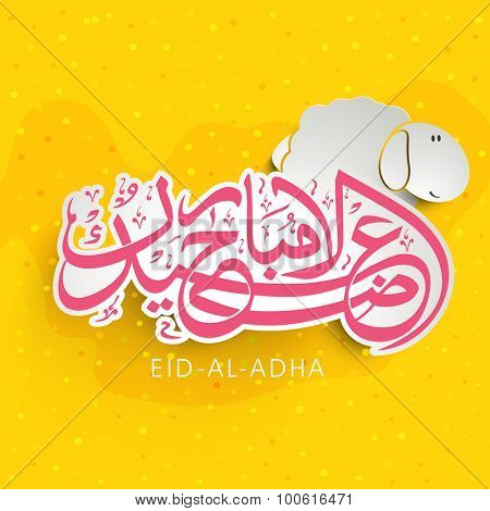 Stylish pink Arabic Islamic calligraphy of text Eid-Ul-Adha Mubarak with sheep on yellow background for Islamic Festival of Sacrifice celebration.