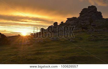 Sunrise On Hound Tor