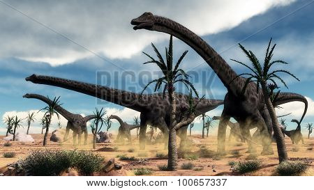 Diplodocus dinosaurs herd in the desert - 3D render