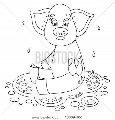 Cute funny piggy sits on water puddle, coloring book