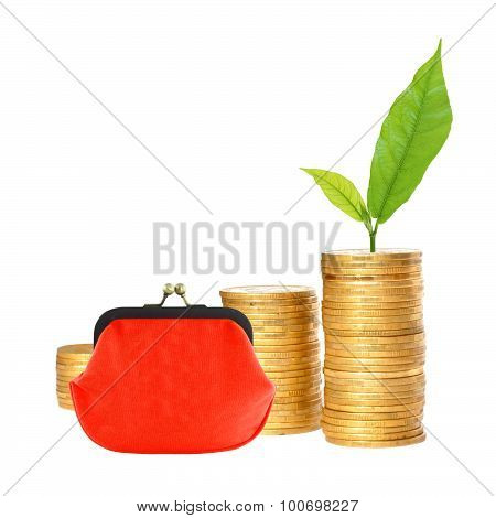 Savings, Increasing Columns Of Gold Coins, Red Purse And Green Plant