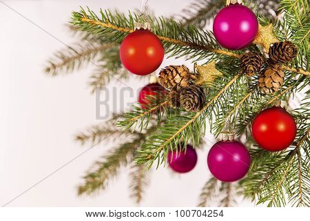 Pink And Red Decoration On A Branch