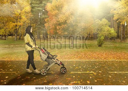 Mother With Carriage Going For A Walk In