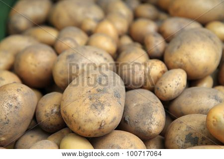 Red Potatoes Background