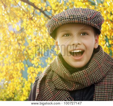 child happy smile portrait on autumn leaves background