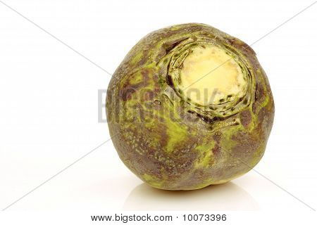 one fresh turnip(Brassica rapa rapa)