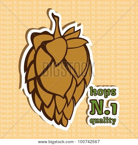 Hop Flower Illustration