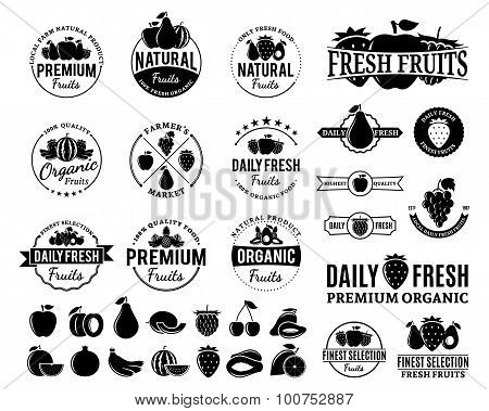 Fruit Labels, Fruits Icons and Design Elements