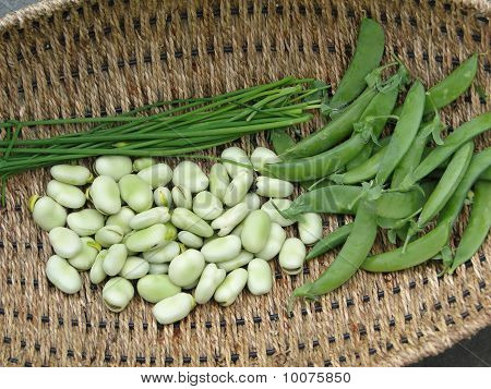 Peas, Fava Beans And Chives In A Basket