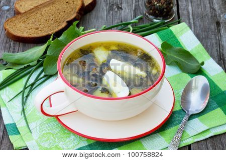 Sorrel Soup With Egg And Greens On A Wooden Background