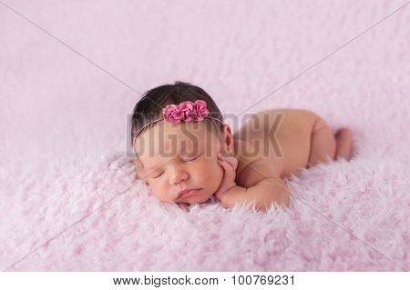 Newborn Baby Girl Wearing A Pink Rose Headband