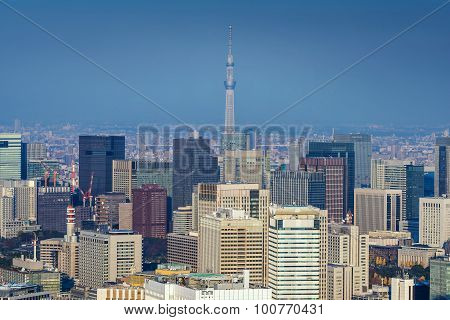 Skyline Of Tokyo Cityscape With Tokyo Skytree, Japan