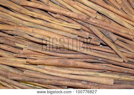Cinnamon (cinnamon)
