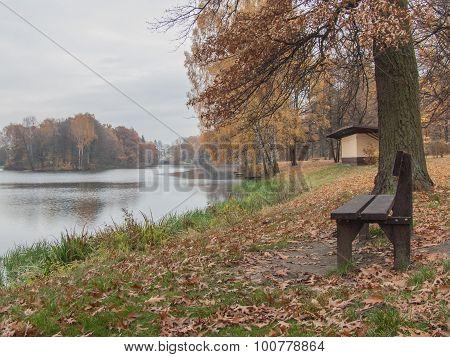 Autumn park.