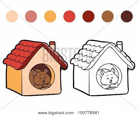 Coloring Book For Children: Hamster