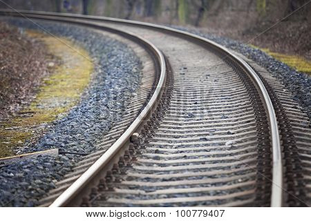 Railway Track going through Trees