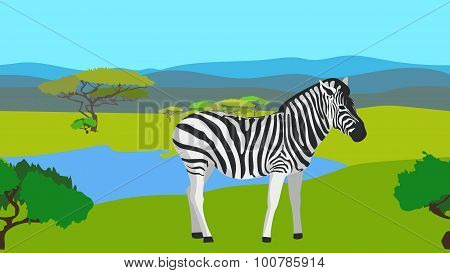 Zebra in the field with green grass, horisontal patterns seamless, animal, nature