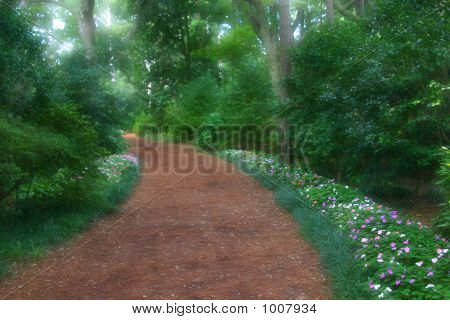 Dreamy Garden Path