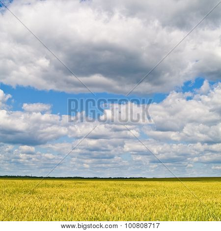 beautiful landscape with blue sky and white clouds