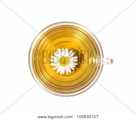 isolated transparent cup of tea with camomile flower.