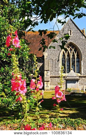 Hambledon church with Hollyhocks.