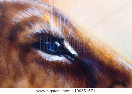 lion cub blue eye. animal painting on vintage paper.