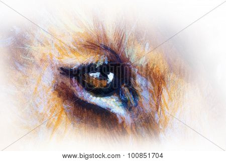 lion cub eye. animal painting on vintage paper.