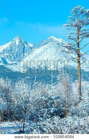 Winter Mountain Landscape (poland).