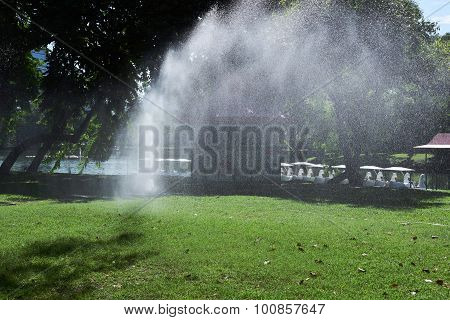 Closed Up The Sprinkler Waters Grass In Park