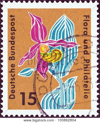 GERMANY - CIRCA 1963: A stamp printed in Germany shows Lady's slipper orchid