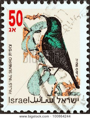 ISRAEL - CIRCA 1992: A stamp printed in Israel shows Palestine sunbird