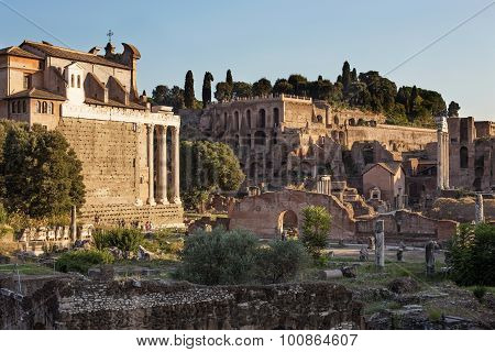 Forum Of Acient Rome, Italy