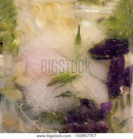 Frozen   Flower Of         Jessamine And Campanula