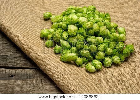 Fresh green hops on burlap background. Top view.