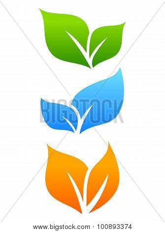 Growing leaves natural icon